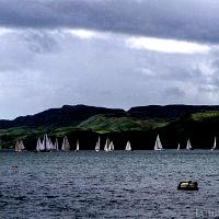 The regatta in Oban Harbour